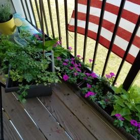 Deck gardening - flowers