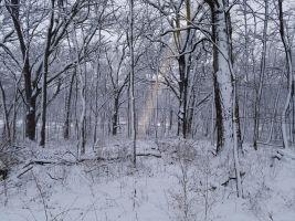 snowwithsunbeam